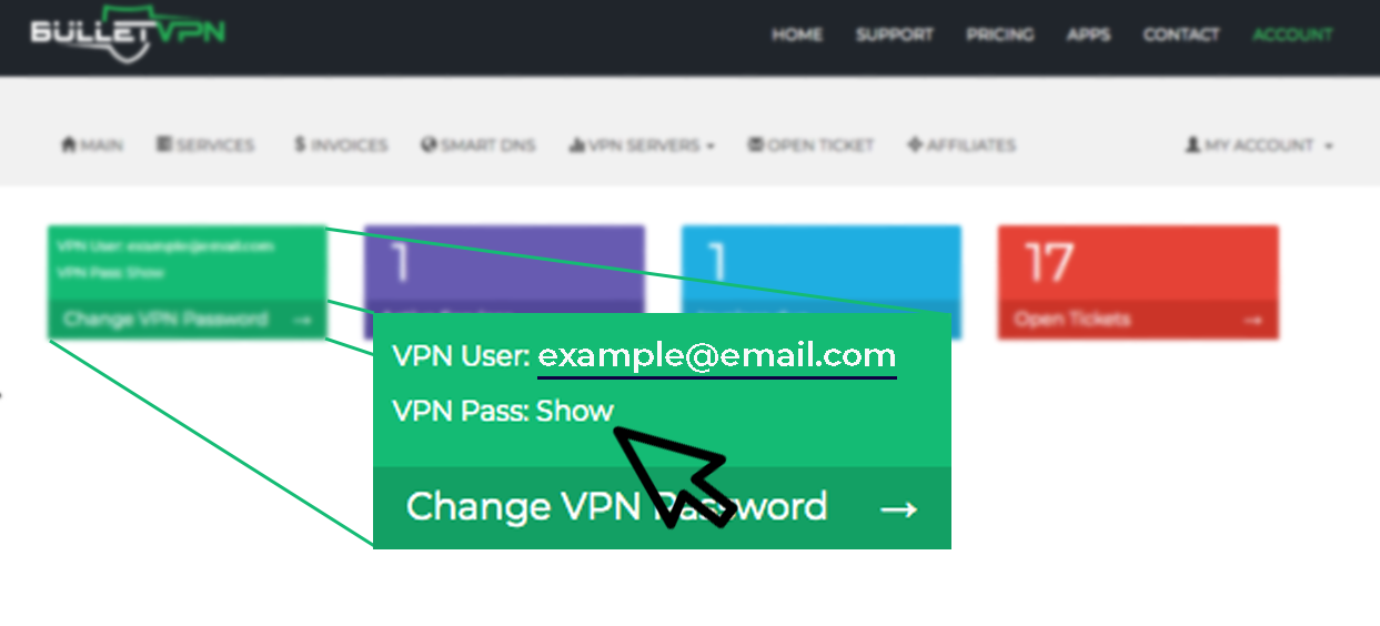 VPN-pass-zoomin.png